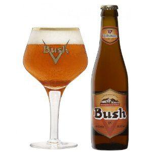 Bush – Caractere