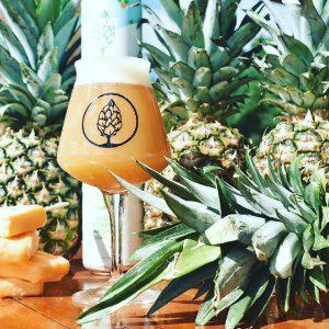 Beer Tree PineApple Creamsicle